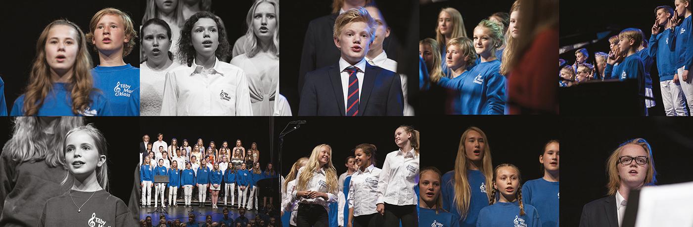 Välkommen till Den stora Vårkonserten 5 juni kl 17.00 och 19.30!