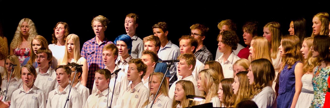 Vill du sjunga tillsammans med andra?